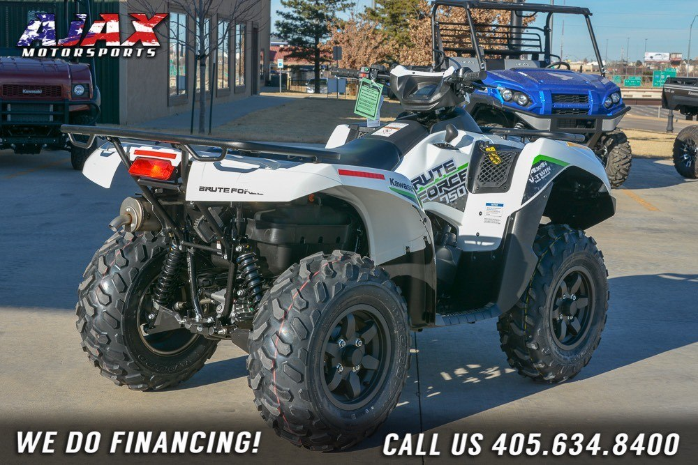 2019 Kawasaki Brute Force 750 4x4i EPS in Oklahoma City, Oklahoma - Photo 5