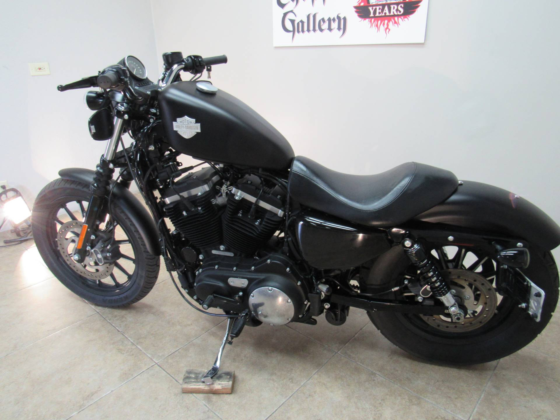 2015 Harley-Davidson Iron 883™ in Temecula, California - Photo 11