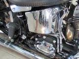 2015 Harley-Davidson Softail® Deluxe in Temecula, California - Photo 24