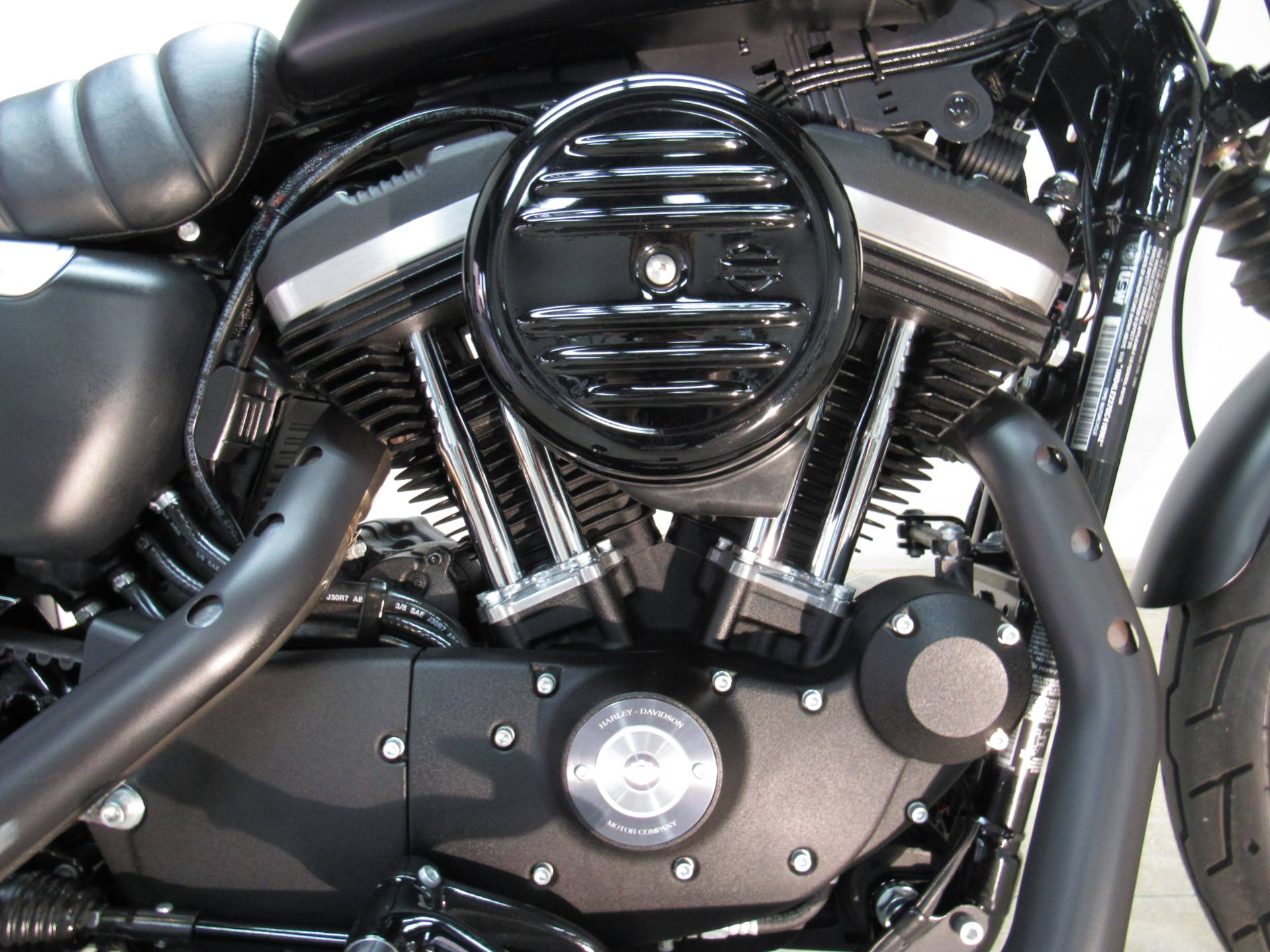 2016 Harley-Davidson Iron 883™ in Temecula, California - Photo 8