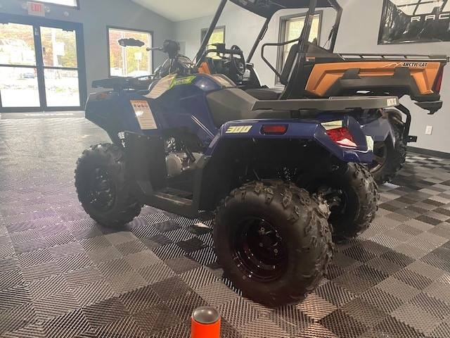 2021 Arctic Cat Alterra 300 in Effort, Pennsylvania - Photo 2