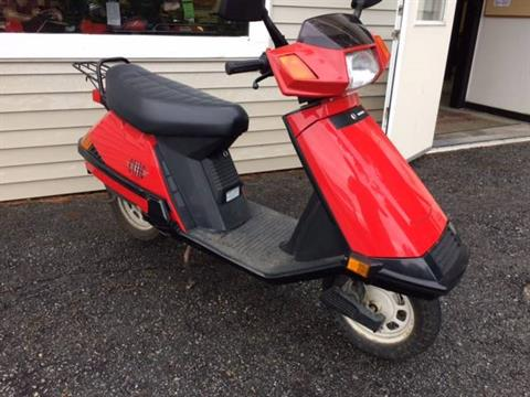 2003 Honda ELITE 80 in Littleton, New Hampshire