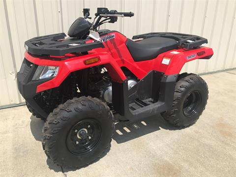 2017 Arctic Cat Alterra 300 in Tifton, Georgia
