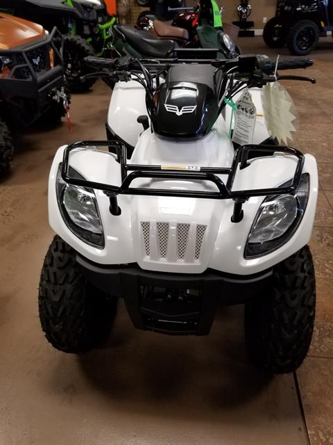 2018 Textron Off Road Alterra 150 in Tifton, Georgia - Photo 5