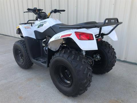 2018 Textron Off Road ARCTIC CAT 150 in Tifton, Georgia