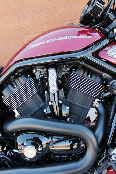 2016 Harley-Davidson Night Rod® Special in Kingman, Arizona