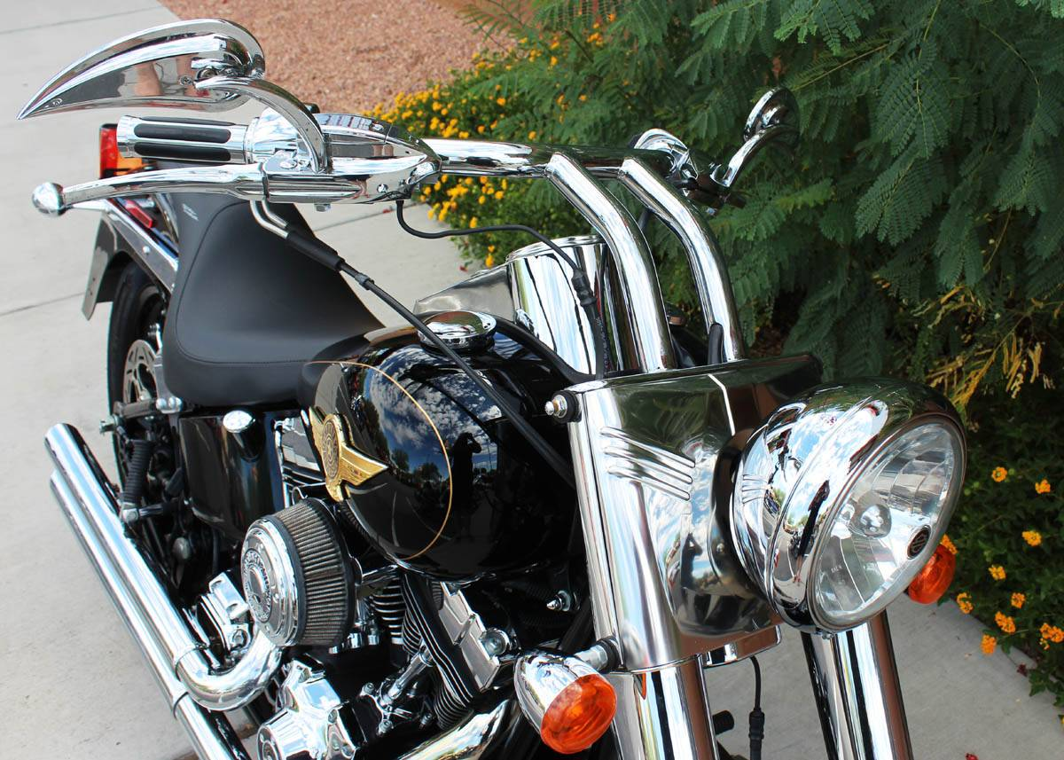 2005 Harley-Davidson FLSTF/FLSTFI Fat Boy® in Kingman, Arizona