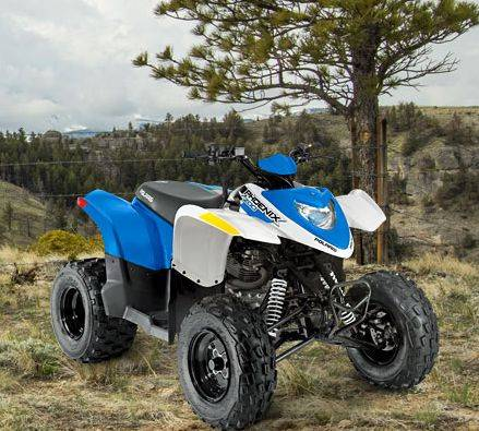 2014 Polaris Phoenix™ 200 in Lake Havasu City, Arizona - Photo 1