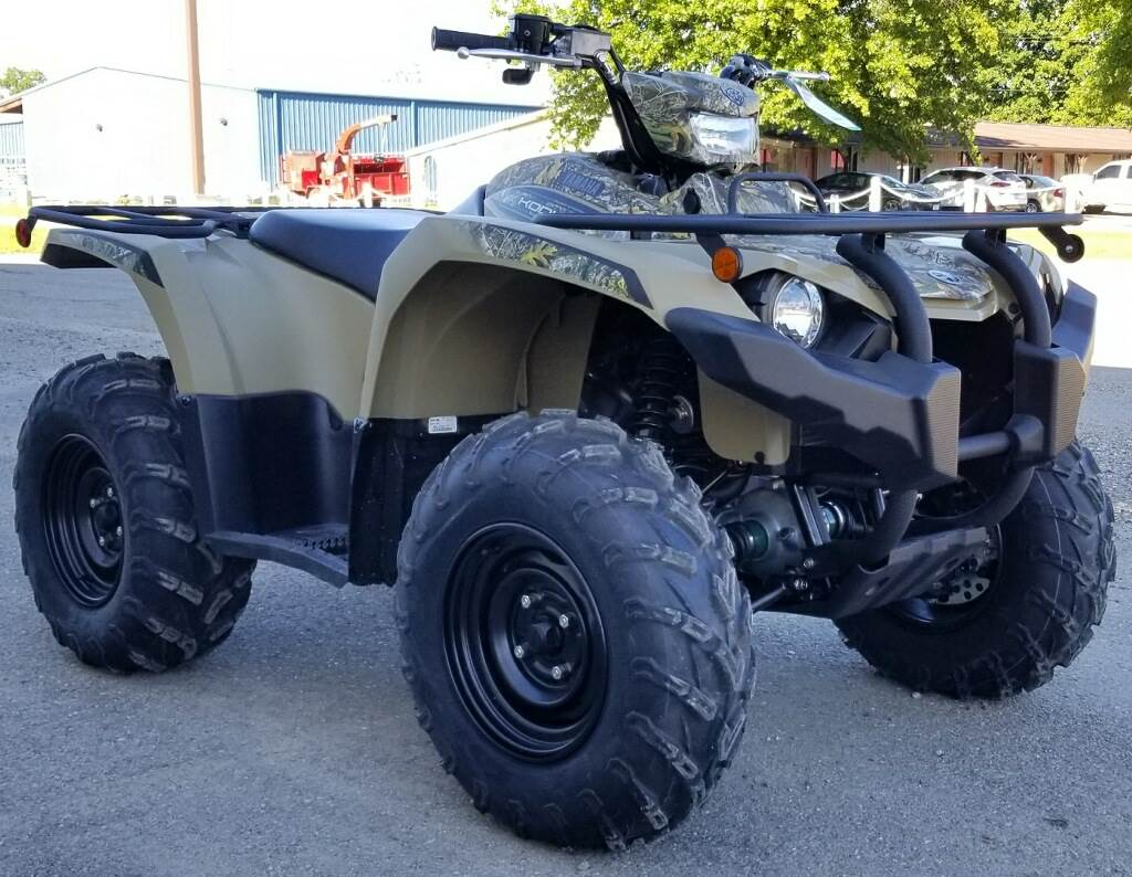 2019 Yamaha Kodiak 450 EPS in Cambridge, Ohio - Photo 2