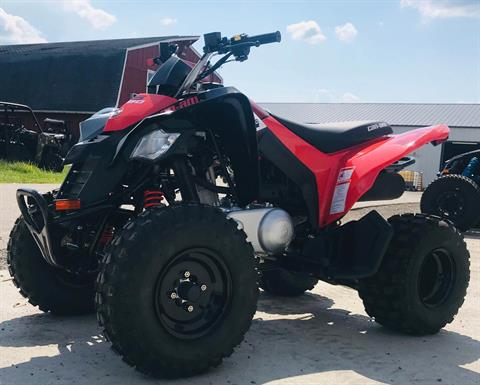 2020 Can-Am DS 250 in Cambridge, Ohio - Photo 2
