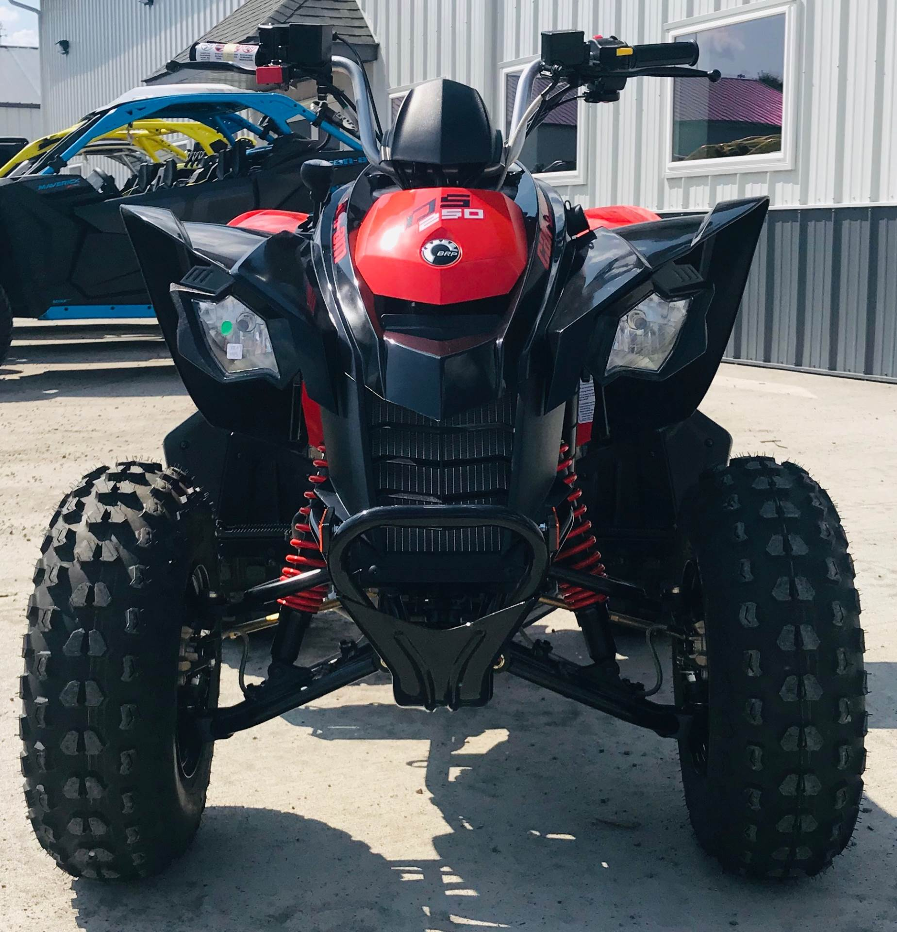 2020 Can-Am DS 250 in Cambridge, Ohio - Photo 3