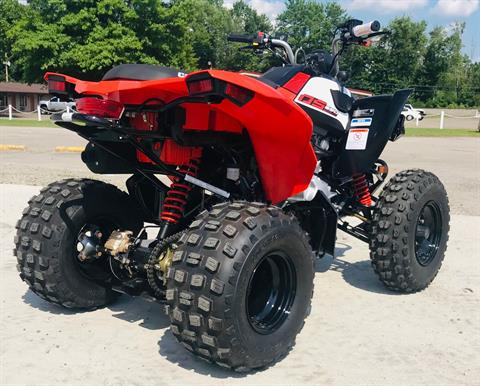 2020 Can-Am DS 250 in Cambridge, Ohio - Photo 6