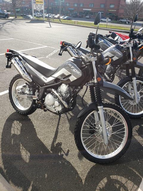 2021 Yamaha XT250 in Danbury, Connecticut - Photo 1