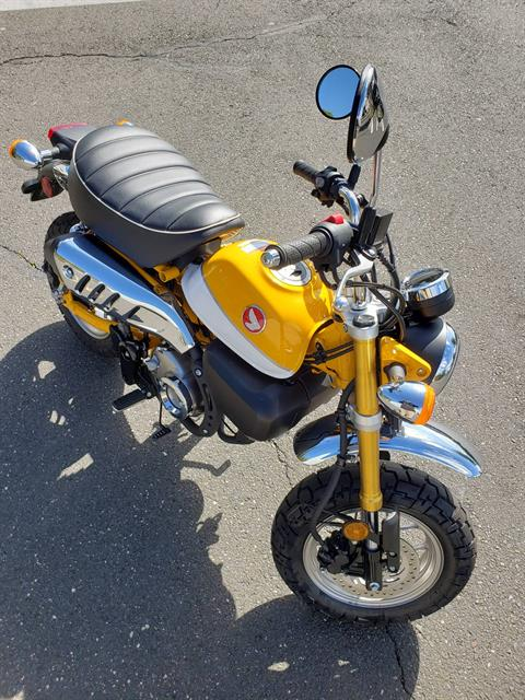2019 Honda Monkey 125 in Danbury, Connecticut - Photo 1