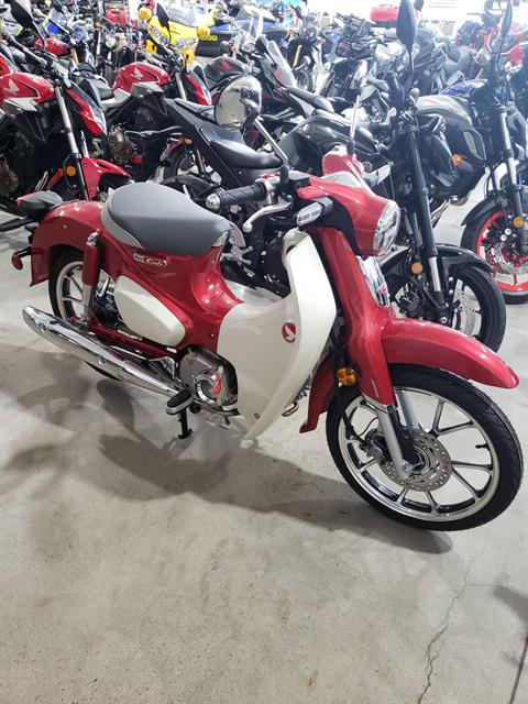 2021 Honda Super Cub 125 ABS in Danbury, Connecticut