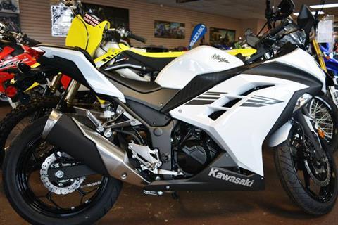 2017 Kawasaki Ninja 300 ABS in Clearwater, Florida