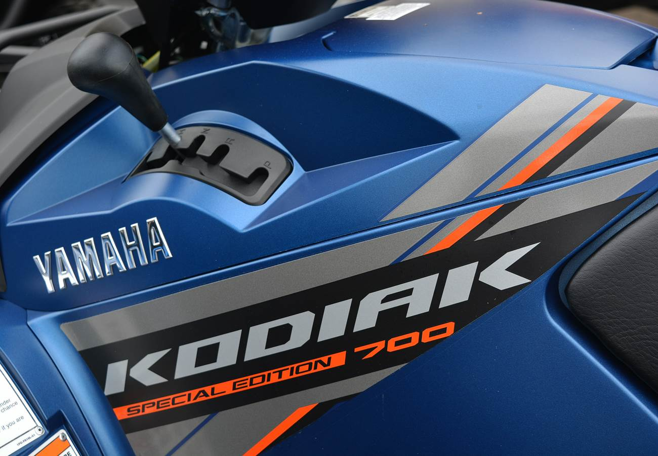 2019 Yamaha Kodiak 700 EPS SE in Clearwater, Florida - Photo 13