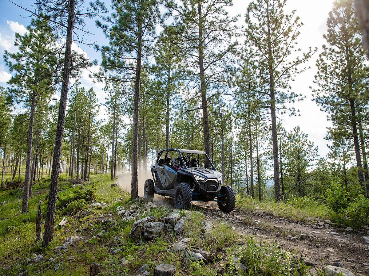 2021 Polaris RZR PRO XP Ultimate in Clearwater, Florida - Photo 4