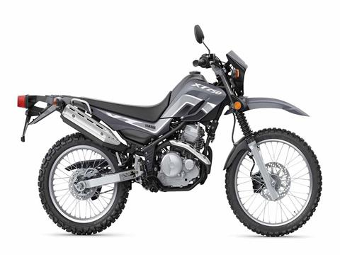 2021 Yamaha XT250 in Clearwater, Florida - Photo 1
