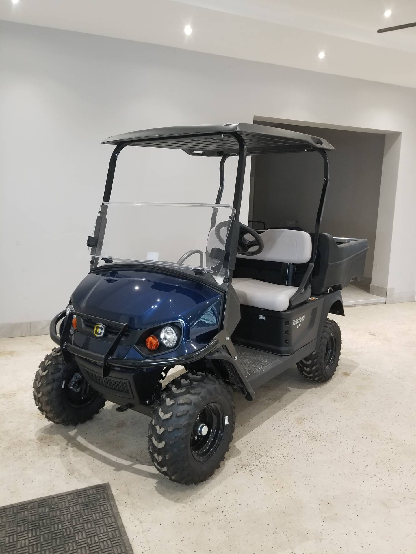2019 Cushman Hauler 800X EFI Gas in Binghamton, New York - Photo 1