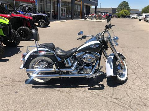 2008 Harley-Davidson Softail® Deluxe in Albuquerque, New Mexico