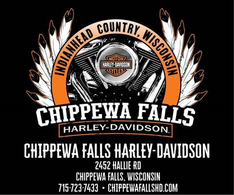2020 Harley-Davidson Road Glide® Limited in Chippewa Falls, Wisconsin - Photo 7