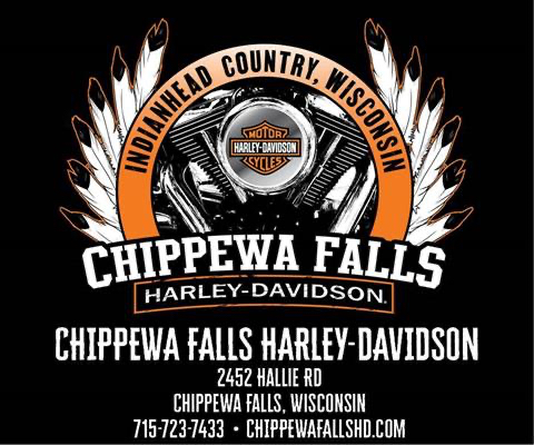 2018 Harley-Davidson Ultra Limited in Chippewa Falls, Wisconsin - Photo 20