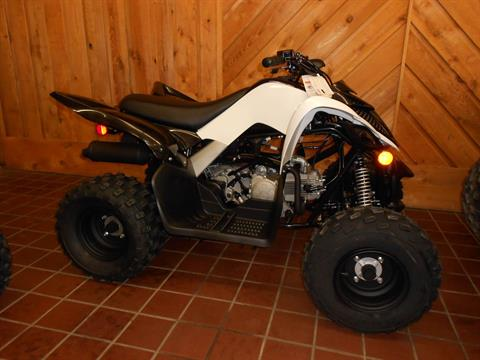 2020 Yamaha Raptor 90 in Abilene, Texas - Photo 1