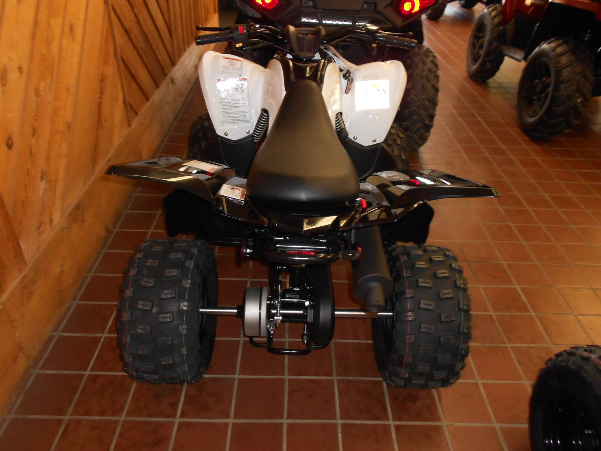 2020 Yamaha Raptor 90 in Abilene, Texas - Photo 2