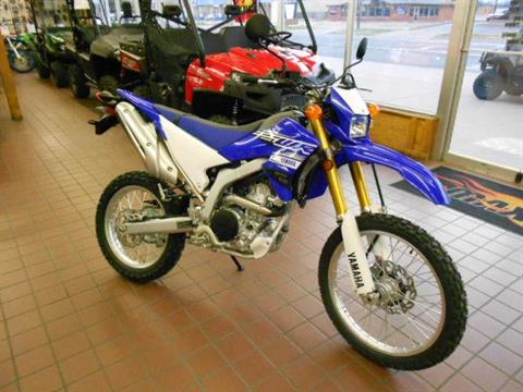 2019 Yamaha WR250R in Abilene, Texas - Photo 1