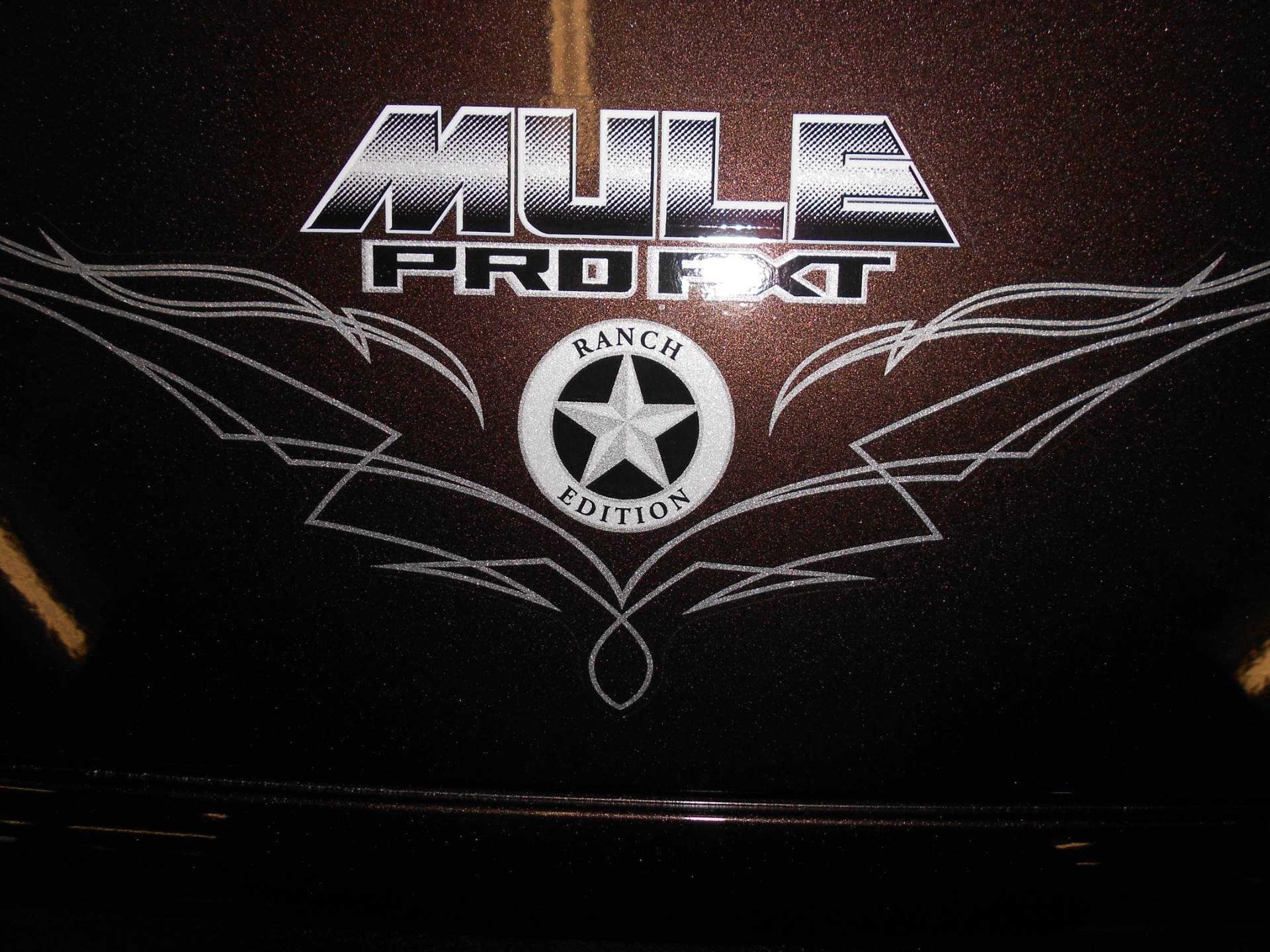 2020 Kawasaki Mule PRO-FXT Ranch Edition 7