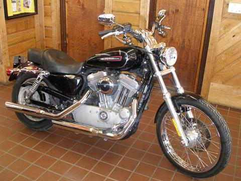 2009 Harley Davidson XL883 Custom in Abilene, Texas