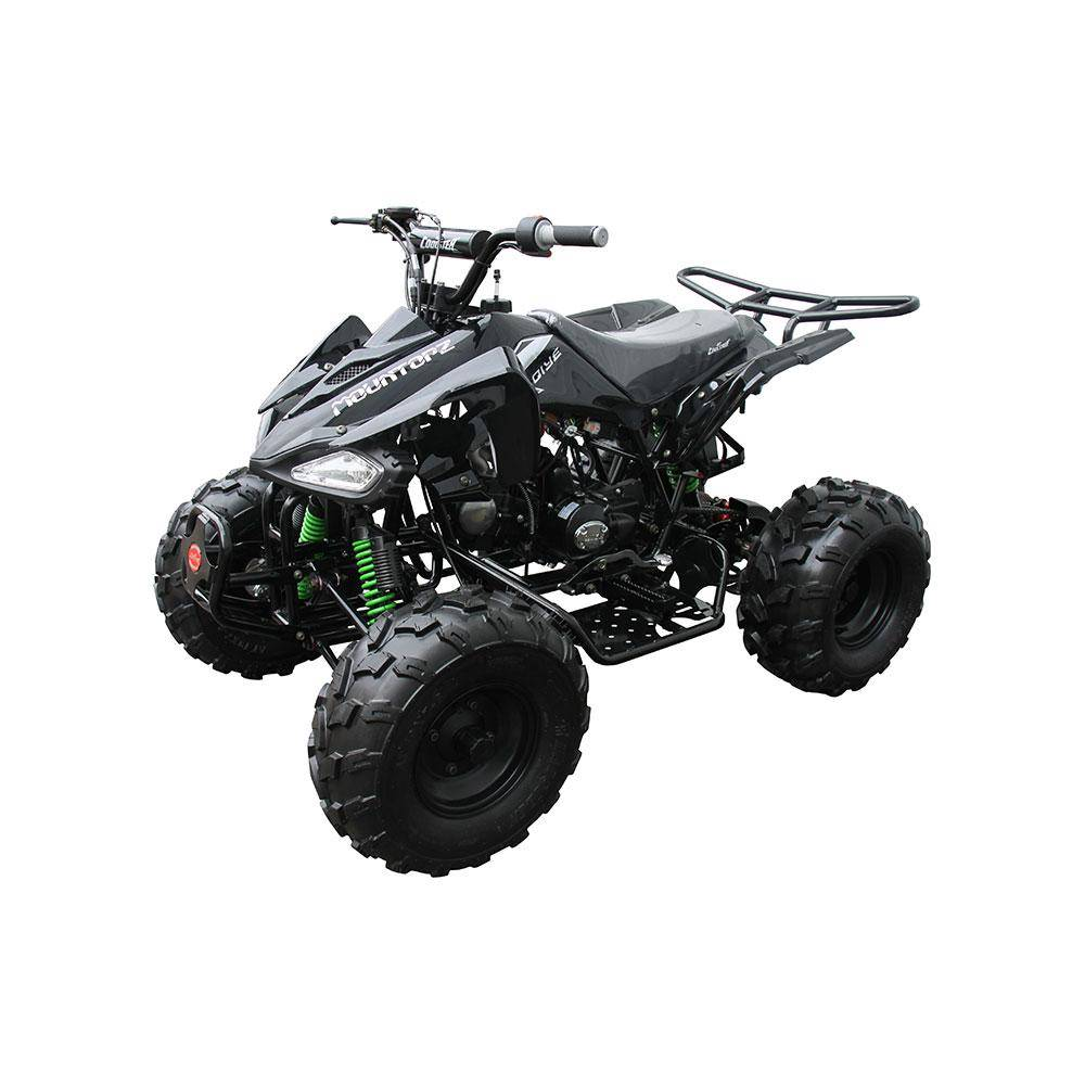2017 Coolster ATV-3125CX-2 in Virginia Beach, Virginia