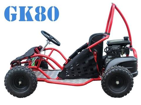2017 Taotao USA GK80 GO CART in Virginia Beach, Virginia