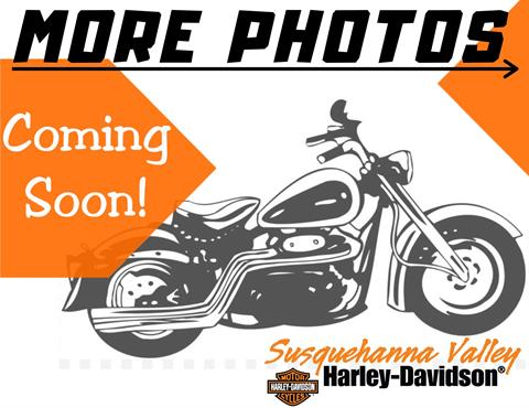 2020 Harley-Davidson Ultra Limited in Harrisburg, Pennsylvania - Photo 4