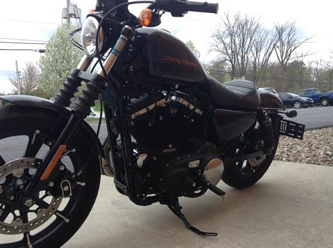2019 Harley-Davidson Iron 883™ in Harrisburg, Pennsylvania - Photo 4