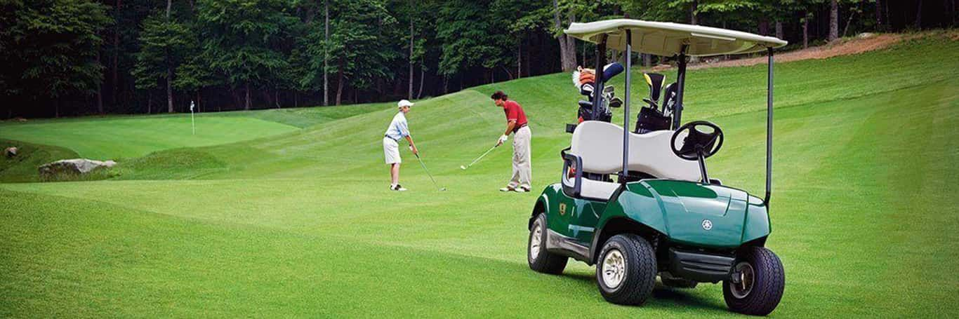Yamaha Golf Carts are available at Ultimate Golf Carts | Otsego, MN