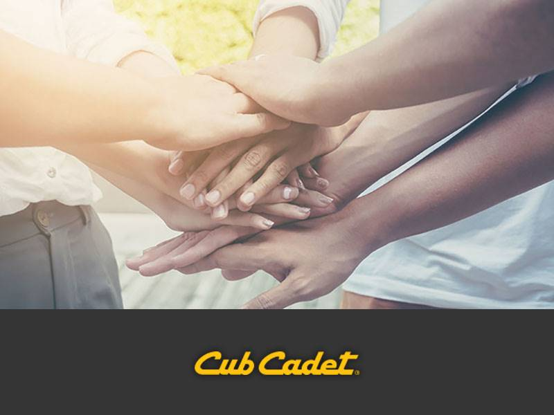 Cub Cadet - Bid Program