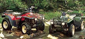2000 Arctic Cat 300 4X4 in Gaylord, Michigan
