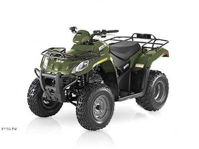 2007 Arctic Cat 250 2x4 Automatic in Payson, Arizona