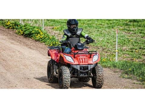 2014 Arctic Cat 150 in Baldwin, Michigan