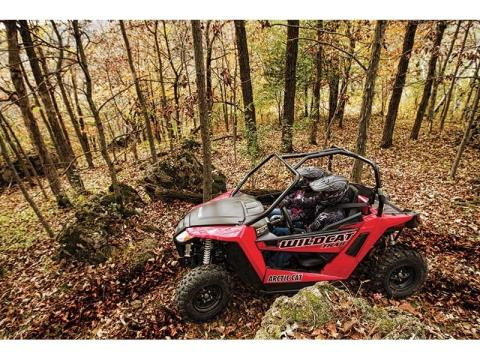 2014 Arctic Cat Wildcat™ Trail in Scottsbluff, Nebraska - Photo 3