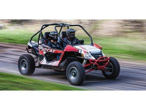 2014 Arctic Cat Wildcat™ X in Safford, Arizona