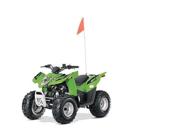 2015 Arctic Cat DVX™ 90 in Harrisburg, Illinois