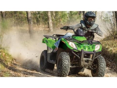 2016 Arctic Cat 300 in Twin Falls, Idaho - Photo 2