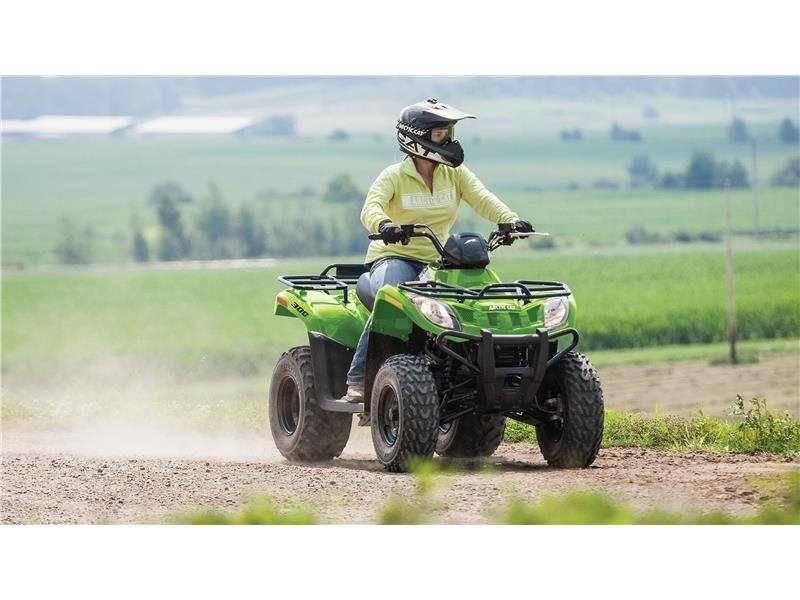 2016 Arctic Cat 300 in Roscoe, Illinois - Photo 5