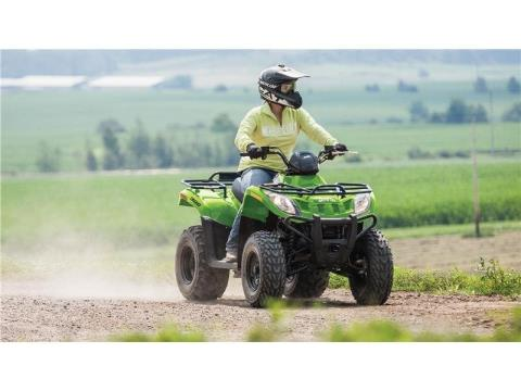 2016 Arctic Cat 300 in Hillsborough, New Hampshire