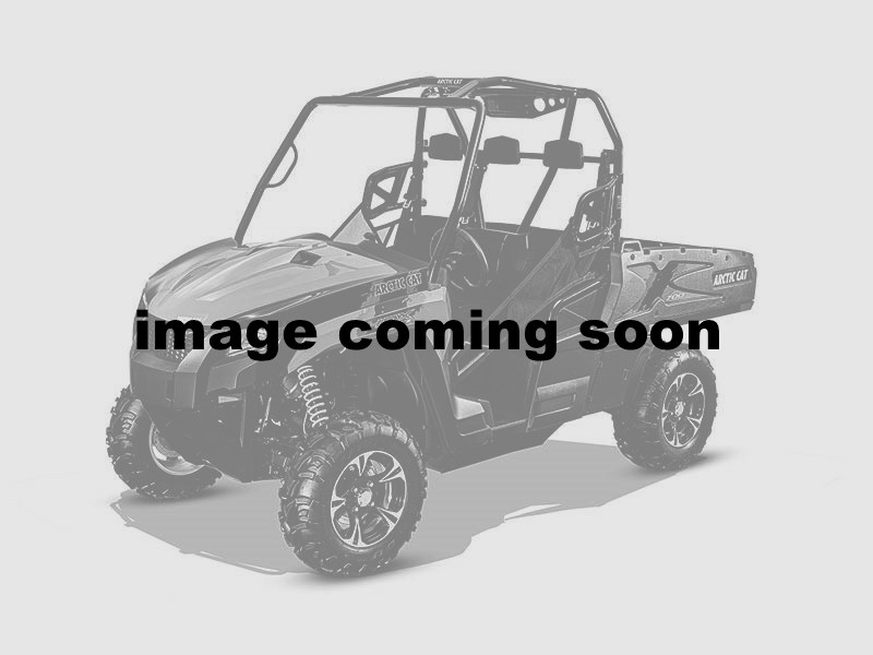 2016 Arctic Cat Prowler 500 in La Marque, Texas