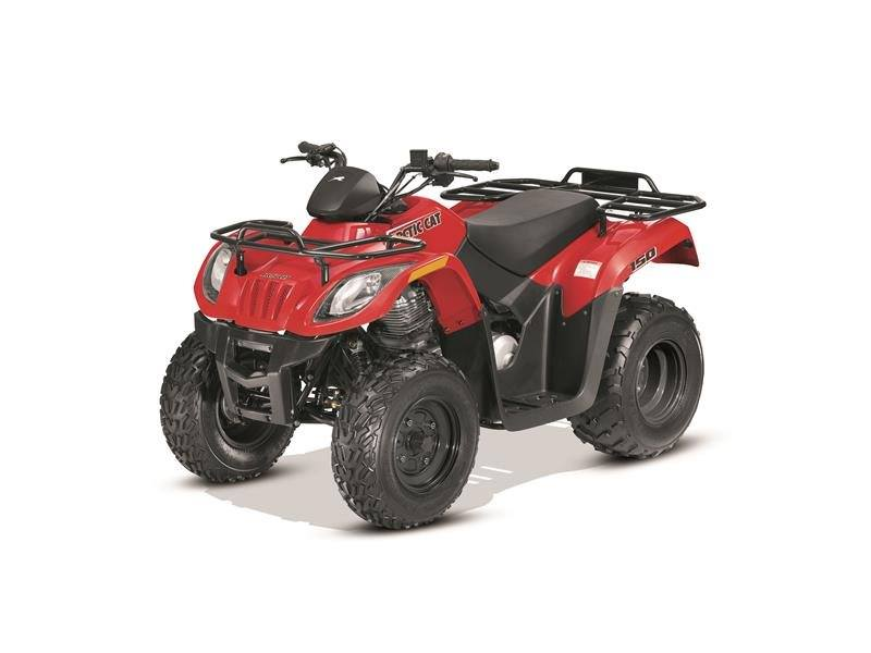 2017 Arctic Cat 150 7