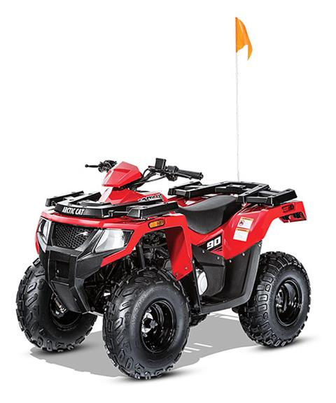 2017 Arctic Cat Alterra 90 in Berlin, New Hampshire